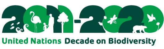 Big Nature pushes for celebration to mark end of the UN International Year of Biodiversity