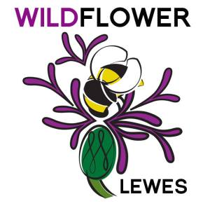 Wildflower Lewes and Millennium Seed Bank